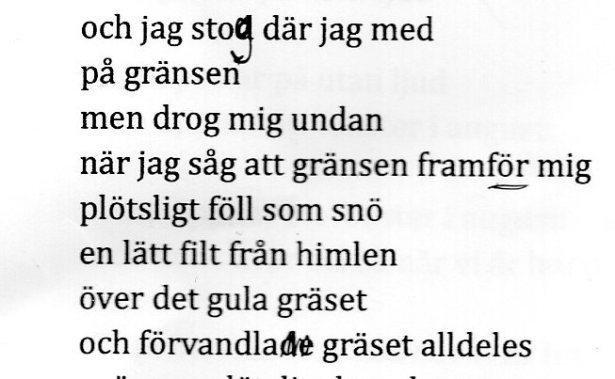 skanning001